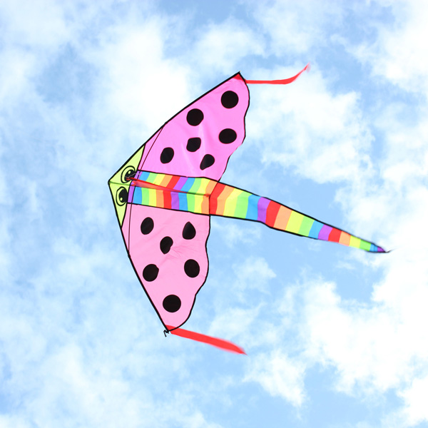 Outdoor Entertainment Kites Pink Cartoon Fish Kite Easy Fly For Kids